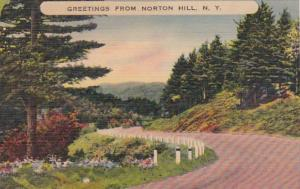 New York Greetings From Norton Hill