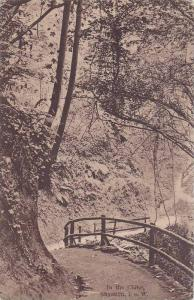 In the Chine, Shanklin, Isle of Wight, England, United Kingdom, PU-1921