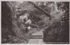 A Pretty Pathway In The Chine Isle Of Wight Real Photo Postcard