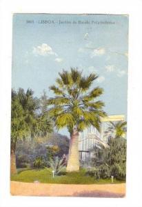LISBOA - Jardin da Excola Polytechnica, Portugal , 00-10s