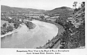 TOWANDA PA~DAVID WILMONT HOTEL~SUSQUEHANNA RIVER VIEW-1949 REAL PHOTO POSTCARD