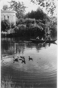 B107316 Russia Park Dvorta Lake Swan Birds real photo uk