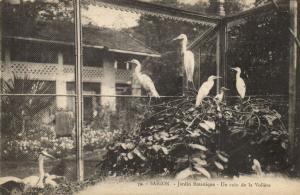 CPA Vietnam Indochine -  Saigon - Jardin Botanique (84946)