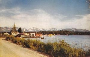 Lake Spenard Alaska Scenic Road Waterfront Vintage Postcard K58442