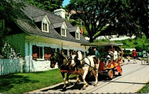 Michigan Mackinac Island Horse and Carriage