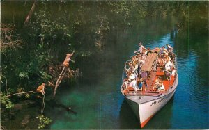 Florida's Silver Springs Ocala Florida Jay Dee Jungle Cruise Postcard 11449