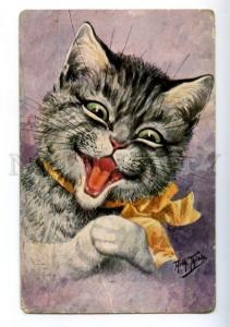156479 Dressed Cat KITTEN w/ Bow PORTRAIT by THIELE Vintage PC