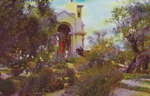Garden Of Gethsemane Jerusalem Jordan