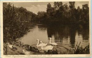 Germany - Bad Oeynhausen Schnianenteich am Siel (Swans)