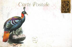 Postcard French Vintage Shabby Chic Style, Exotic Bird, Floral, 38H