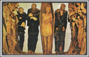 Mexico Excellently Preserved Mummies in Guanajuato
