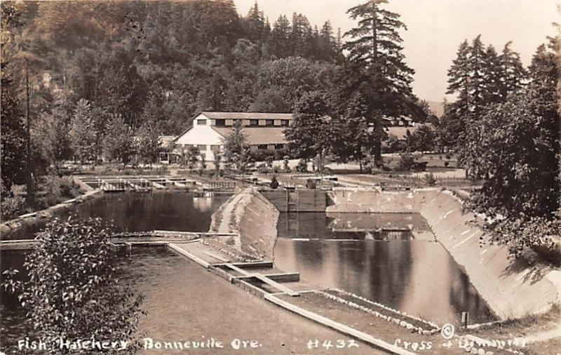 Bonneville Oregon~Fish Hatchery~Cross & Dimmitt 1920s Real Photo Postcard~RPPC