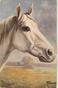 Horse  Tuck Oilette France  Series 811P. Artist signed