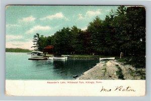 Killingly CT, Alexander's Lake Wildwood Park Vintage Connecticut c1907 Postcard