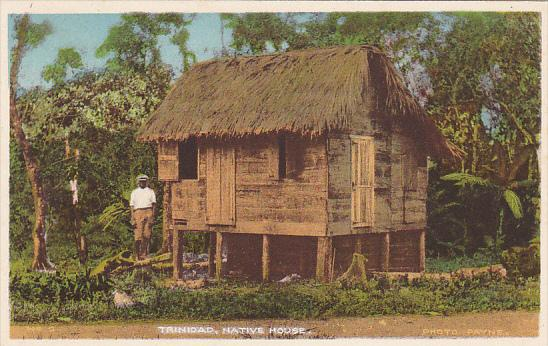 Trinidad Native House