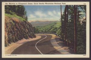 Skyway to Clingman's Dome,Great Smoky Mountains Postcard
