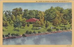 New York Rochester Creek In Genesee Valley Park Curteich