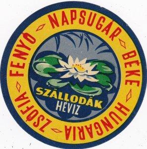 Hungary Heviz Hotels Zsofia Fenyo Napsugar & Beke Vintage Luggage Label sk3716