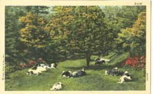 USA, A Farm Scene unused linen Postcard