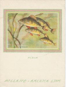 Holland America Line Ocean Liner S.S. MAASDAM Menu, Dinner 1952; Fish