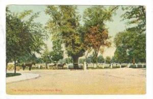 The Washington Elm, Cambridge, Massachusetts, PU-1909