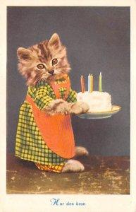 Cat Post Card Har Den Aran Birthday Cat Unused