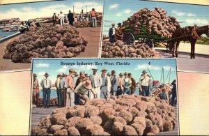 Florida Key West Sponge Industry Multi View 1938