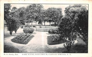 Park Scene Clifton Springs, New York Postcard