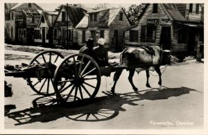 suriname, PARAMARIBO, Ossenkar, Ox Cart (1954) RPPC Stamp