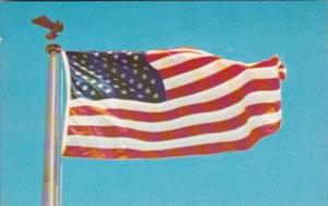 The American Flag Stars & Stripes