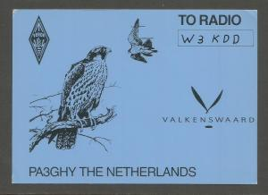 QSL AMATEUR RADIO CARD – VALKENSWAARD, THE NETHERLANDS – 1993 - FALCON