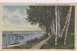 Michigan Northern Michigan White Birches On Burt Lake