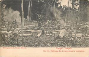 French Congo CLICHE 1900 R. VISSER N° 31 Defricher les terrains pour plantation