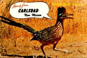 New Mexico State Bird The Desert Road Runner