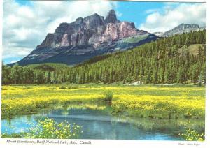 Canada, Mount Eisenhower, Banff National Park, Alta, unused Postcard