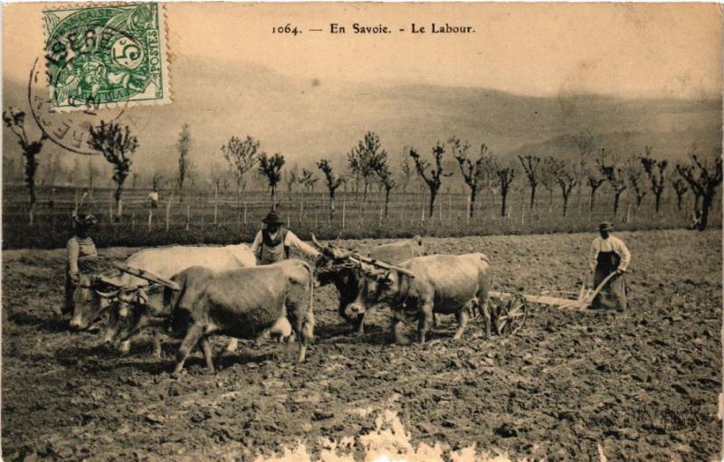 CPA En Savoie - Le Labour - Folklore - Types (482168)