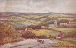 England Sleights From Blue Bank 1912