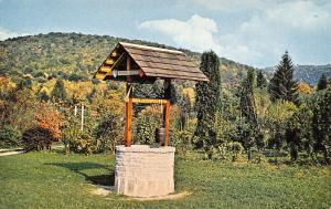 Silver Lake West Virginia~Timpinogo's Wishing Well~Roadside US Route 219~1950s