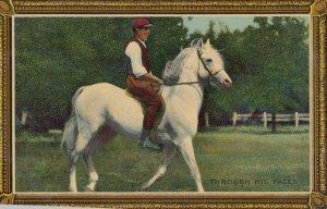 HORSE ; Through his Paces , 00-10s