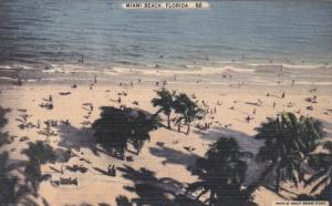 Beautiful Scene, Palm Trees, MIAMI BEACH, Florida, 1930-1940s