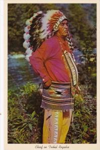 Indian Chief In Tribal Regalia