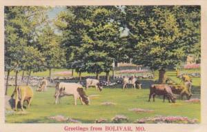 Missouri Greetings From Bolivar