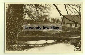 tp0035 - Dorset - Unusual View of The Wishing Well c1929, in Upway - Postcard