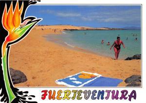 Spain Fuerteventura, Canary Islands Postcard, Corralejo #583