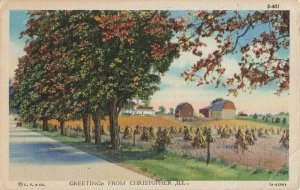 Postcard Greetings from Christopher Illinois