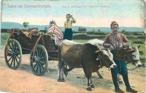 Postcard Turkey Constantinopole  Char de demenagement cows cart ethnic postcard