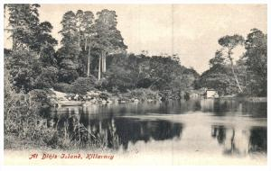 17096 Ireland  Killarney  1912   Dinis Island