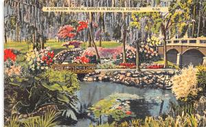 A Southern Tropical Garden in Beautiful Florida 1938