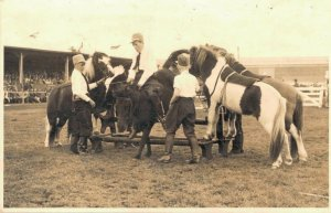 Horse Sport - Boys with Horses Real Photo - 03.00