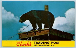 Postcard NH North Woodstock Clark's Trading Post Black Bear Rastus Roadside U6